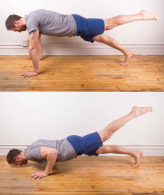body leg muscle