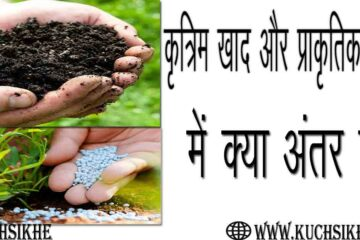 difference between chemical and natural fertilizers